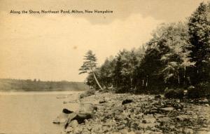 NH - Milton. Northeast Pond, along the Shore