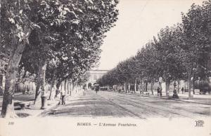 NIMES, Gard, France, 1900-1910´s; L'Avenue Feucheres