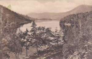 Vermont Plymouth Amherst Lake Albertype