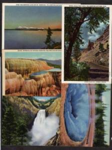 Lot 5 older Yellowstone National Nat Park Postcards PC