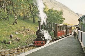 Abergynolwyn Evening Welsh Train Man With Huge Sideburns Postcard