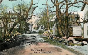 Gloucester Massachusetts~Dirt Road To Eastern Point~Tangled Trees~Homes~1905