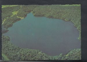 Australia Postcard - Lake Barrine Surrounded By a National Park Forest   RR3568