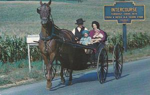 Pennsylvania Dutch Country, Amish Family In Horse Carriage, Leaving Intercour...
