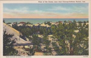Indiana View Of The Dunes Near East Chicago-Indiana Harbor Curteich