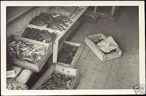Scandinavian Fish Market, Boxes with Fish 30s RPPC