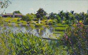 Florida Winter Haven Water Gardens Park