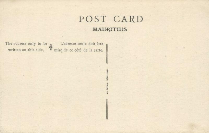 mauritius, Tamarin Fall, Native Types Creoles, Bananas (1910s)