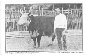 Will Rogers and the World's Largest Steer, copyright 1936 Mark Hanna