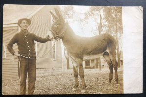 Mint USA Vintage  Real Picture Postcard RPPC Cowboy With Donkey