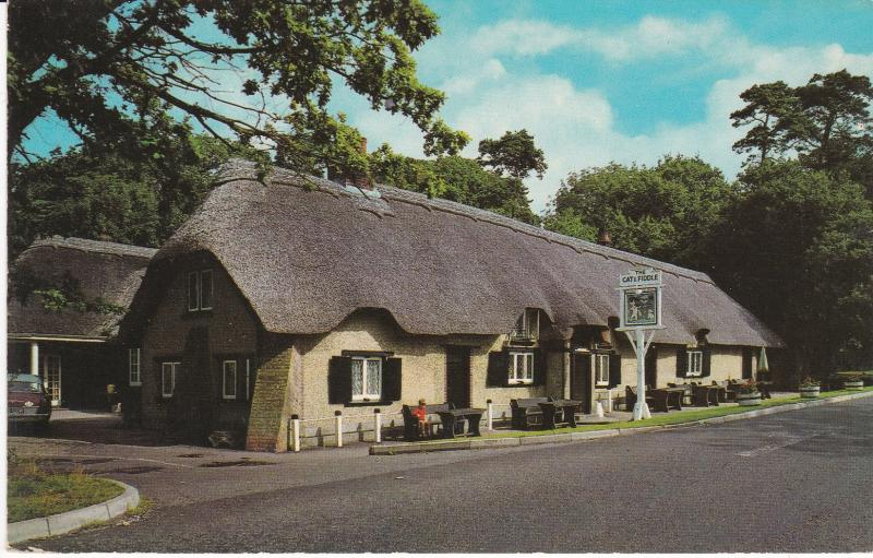 Post Card Hampshire New Forest Cat And Fiddle Inn