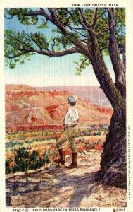 Texas Palo Duro Park View From Triassic Mesa Curteich