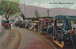 Portugal Madeira Islands Sled Cabs