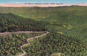 Craggy Gardens Highway North Carolina