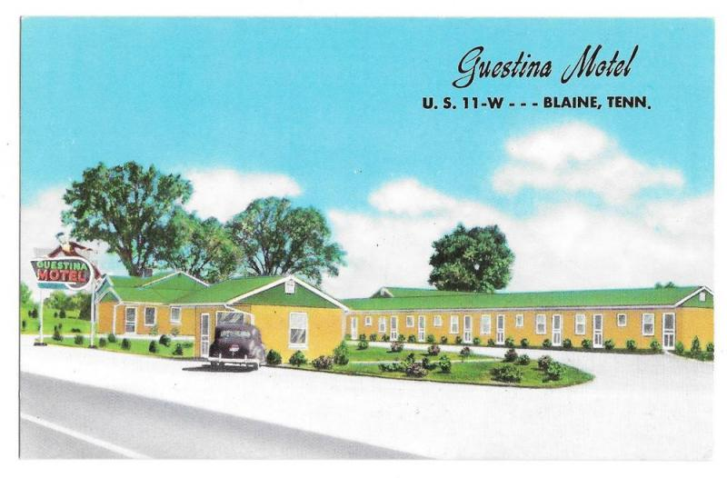 Guestina Motel Blaine Tennessee Vintage Postcard Old Car