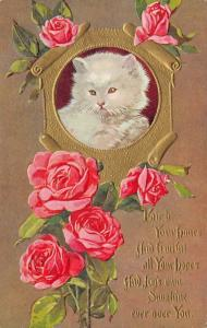 Cats~Fluffy White Green-Eyed Kitty~Gold Scroll~Red Roses~Fruitful Hopes~Emboss