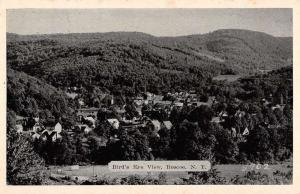 Roscoe New York Birdseye View Of City Antique Postcard K58328