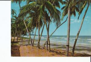Postal 016994: ISLA MARGARITA Venezuela - Vista de la Playa EL AGUA
