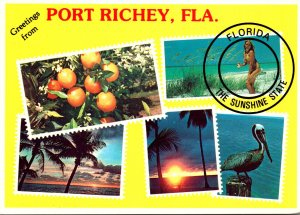 Greetings From Port Richey Florida With Multi Views
