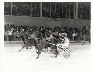 BATAVIA DOWNS Harness Horse Race , ARMBRO OPAQUE wins