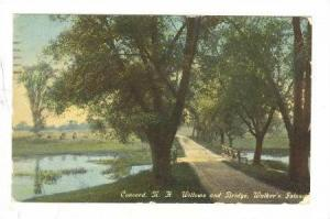 Willows and Bridge, Walker's Island, Concord, New Hampshire, PU-00-10s
