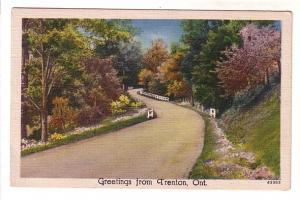 Road with Trees, Greetings from Trenton, Ontario, Metrocraft