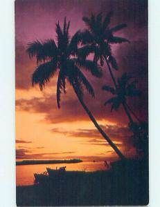 Pre-1980 BEAUTIFUL TREE SILHOUETTE AT SUNSET State Of Hawaii HI hp5878