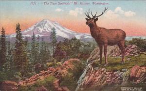 Washington Mount Rainier & Large Elk The Two Sentinels
