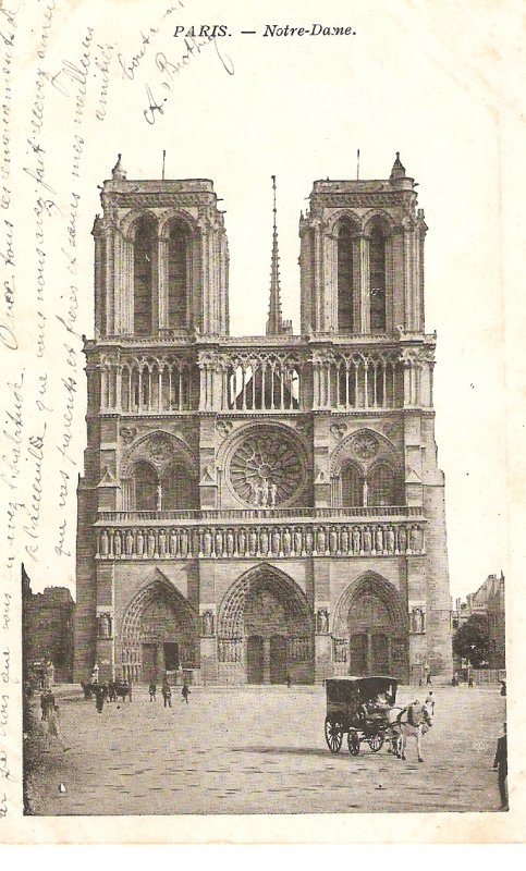 Paris. Notre Dame. Horse cars Old vintqageFrench postcard