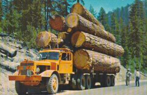 Logging Truck With Load Of Logs