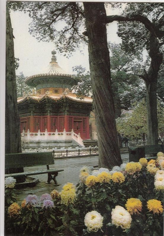 BF18881 imperial garden in the palace museum  china  front/back image