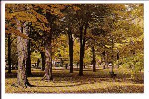 Autumn Scene, Woodstock, Ontario,