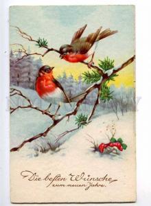 240210 NEW YEAR Greeting MUSHROOM amanita bullfinch Vintage PC