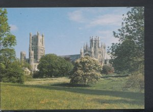 Cambridgeshire Postcard - Ely Cathedral From The Park    T6986