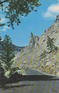 Wyoming Yellowstone National Park Eagle Nest Rock