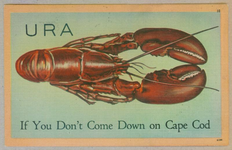 West Harwich, Massachusetts to Biddeford, Maine 1949 Cape Cod Lobster Postcard