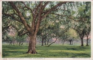 Louisiana New Orleans Old Duelling Ground City Park 1911