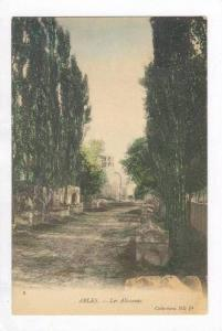 ARLES, France, 00-10s Les Aliscamps