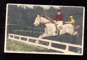 013800 White HORSE RACING Vintage tinted Photo NPG #221
