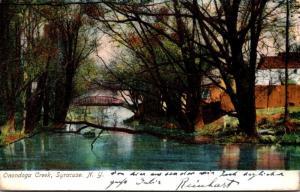 New York Syracuse Onondoga Creek 1907