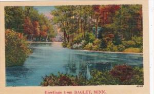 Minnesota Greetings From Bagley