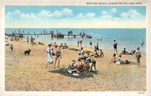 Geneva-on-the-Lake Ohio~Bathing Beach Scene~Boy by Dog~People on Rustic Pier~20s