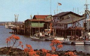 CA - Monterey. Fisherman's Wharf