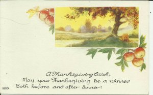 A Thanksgiving Wish, May Your Thanksgiving be a winner....