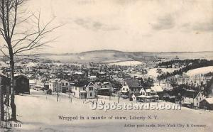 Wrapped in a mantle of Snow Liberty NY 1908