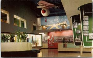 Postcard CA Los Angeles State Museum Agricultural Hall Huge Olive Display  G01