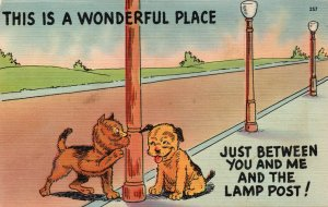 11132 Puppies and the Lamp Post Comic Postcard
