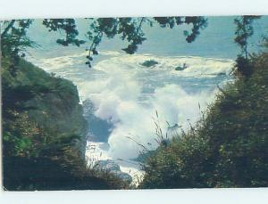 Pre-1980 NATURE SCENE Big Sur - Near Carmel California CA AD5984