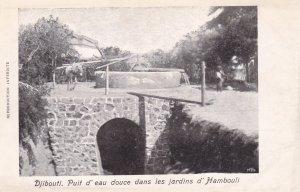 DJIBOUTI , 1900-10s ; Puit d'eau douce dans les jardins d'Hambouli