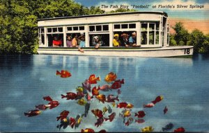 Florida Silver Springs The Fish Play Football Curteich